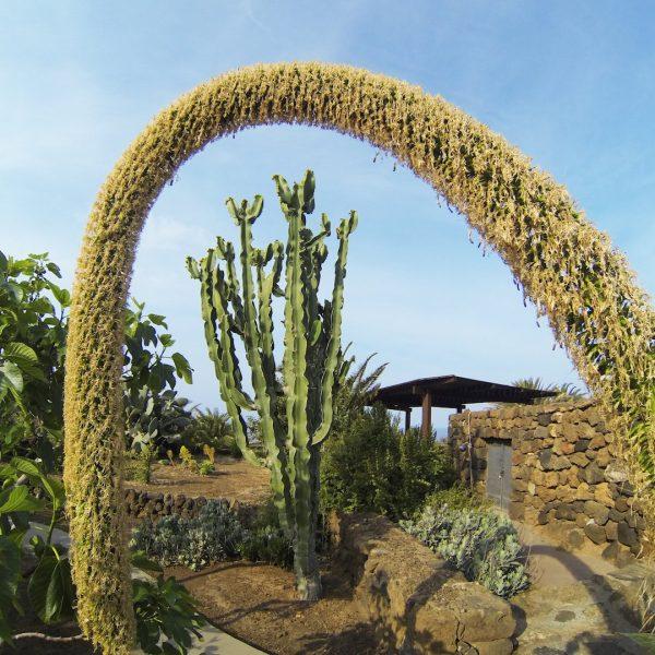 giardino-anforetta